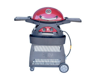 Ziggy by Ziegler & Brown Twin Grill Natural Gas Classic on Cart