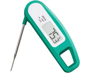 Javelin Thermometer - Mint